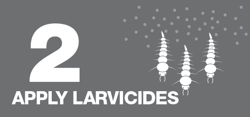 Apply Larvicides Icon